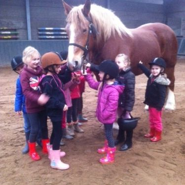 Mini Pony Kids Club