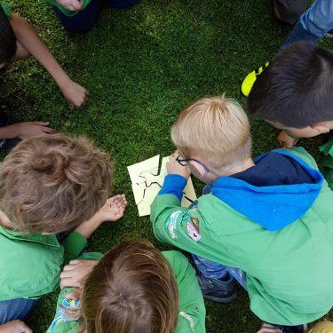Welpen-Jongens, Scouting Oudenbosch