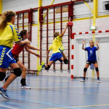 Fotos Handbal en Kamp